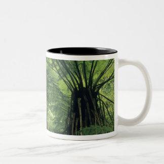 Nyazeeländskt Haast dal, Westland, mjukt träd Två-Tonad Mugg