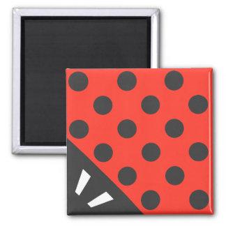 Nyckelpigan kvadrerar svart och rött magnet