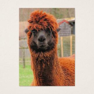 Nyfiken Alpaca~-ATC Visitkort