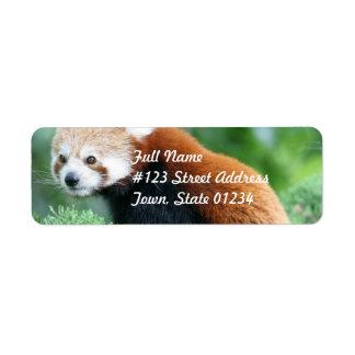 Nyfikna röda Pandabrevskickandeetiketter Returadress Etikett
