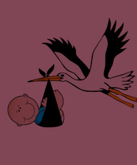 Nyfödd pojke och Stork Tee Shirt