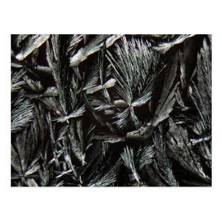 Nystatinkristaller under ett mikroskop vykort
