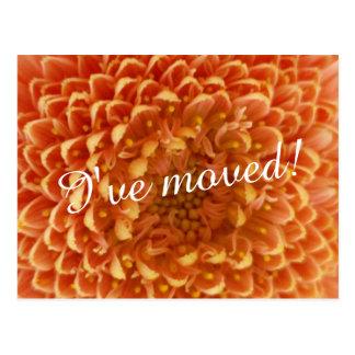 Nytt hem- röra nära övre blommafoto för vykort |