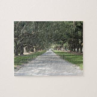 Oakgränd på Boone Hall, Charleston SC-pussel Pussel