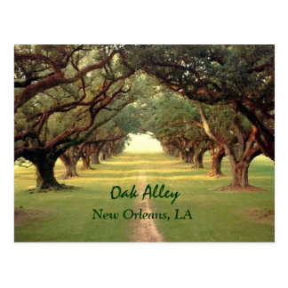 OakgrändNew Orleans vykort