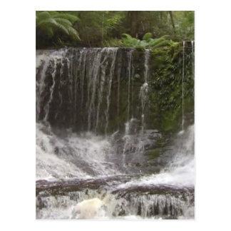 Oasvattenfall i Tasmania söder av Australien Vykort