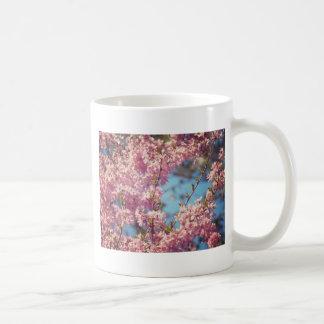 Oavkortad blom för körsbärsröda blommar vit mugg