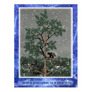 Och en Porcupine i ett grästräd Vykort