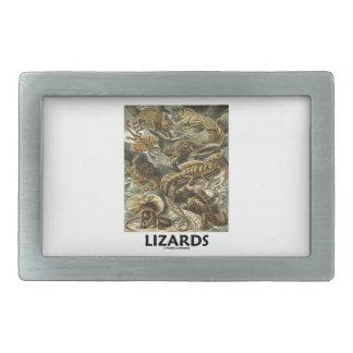 Ödlor Ernest Haeckel Artforms av naturen