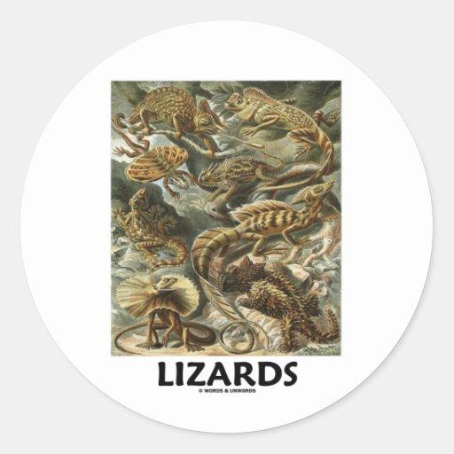 Ödlor (Ernest Haeckel Artforms av naturen) Runda Klistermärken