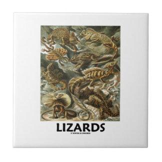 Ödlor Ernest Haeckel Artforms av naturen Liten Kakelplatta