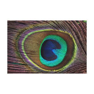 Öga av påfågelfjädern canvastryck