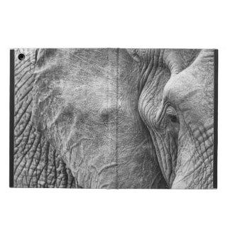 Ögat av en elefant iPad air skal