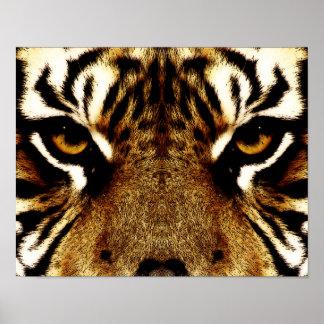 Ögon av en tiger poster