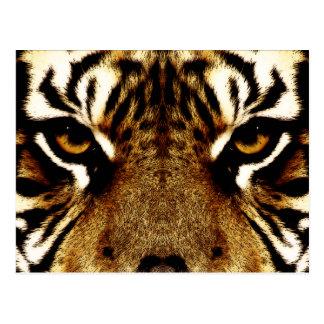 Ögon av en tiger vykort