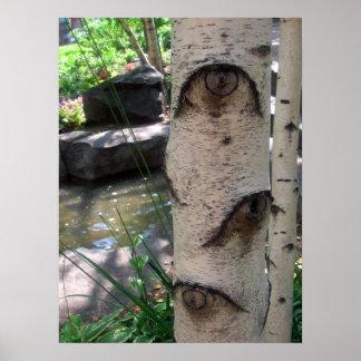 Ögon av ett träd poster