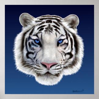 Ögon av tigern poster