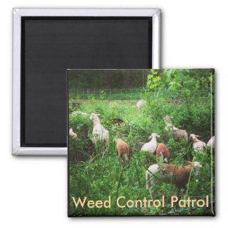 Ogräset kontrollerar patrullmagneten
