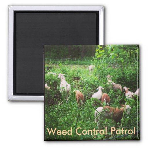 Ogräset kontrollerar patrullmagneten magneter för kylskåp