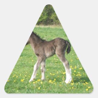 ojust spel triangelformat klistermärke
