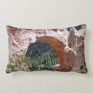 Öken för kanjon för Utah sydöstlig röd stenbåge Lumbarkudde