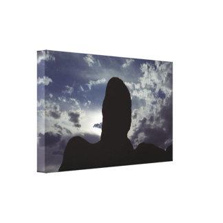 ÖkenSilhouette: Bågenationalpark Canvastryck