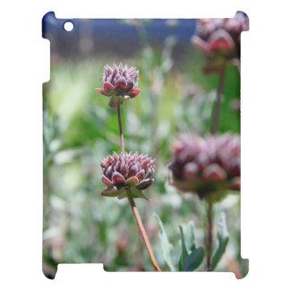 Öknen blommar (lilor) iPad skydd