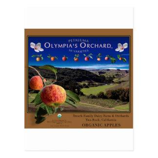 Olympia fruktträdgård vykort