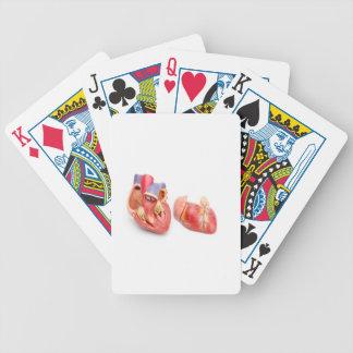 Open modellerar av människahjärtavisningen spelkort
