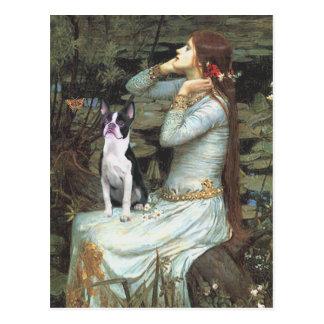Ophelia & - Boston Terrier Vykort