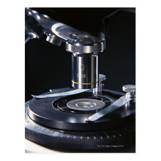 Optiskt mikroskop vykort