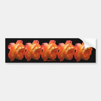 Orange bildekal för roblommafoto