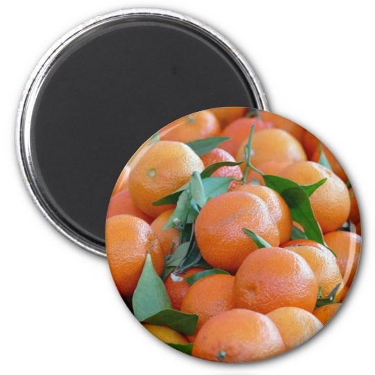 Orange clementines, tangerines and green leafs magnet