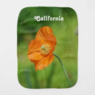 Orange Kalifornien vallmo Bebistrasa