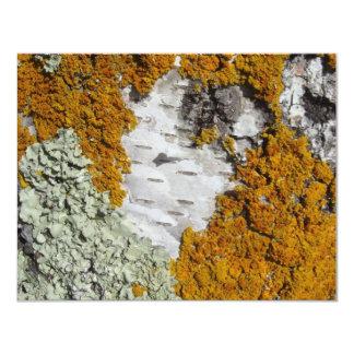Orange lav på en trädstam 10,8 x 14 cm inbjudningskort