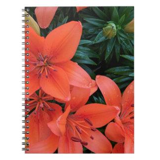 Orange lilja anteckningsbok med spiral