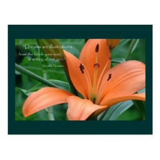 Orange lilja vykort