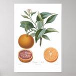 Orange Orange de Malte Affisch
