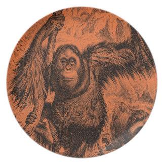 Orange Orangutanillustration för vintage - apa Tallrik
