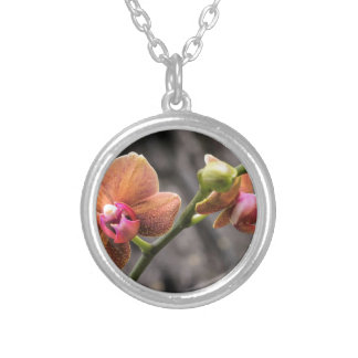 Orange Orchid Silverpläterat Halsband