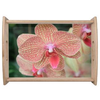 Orange Orchids Serveringsbricka