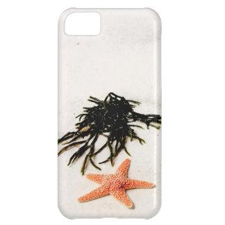 Orange sjöstjärna på en sandig strand för vit iPhone 5C fodral