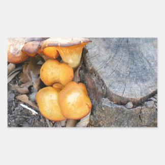 Orange skogsvampfotografi rektangulärt klistermärke