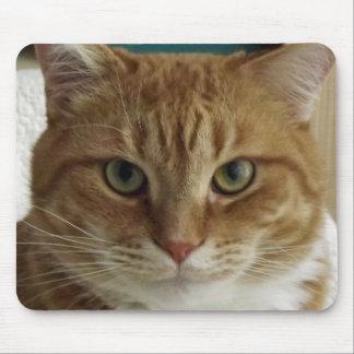 Orange tabby katt Mousepad Musmatta