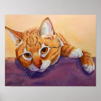 Orange tabby katt poster