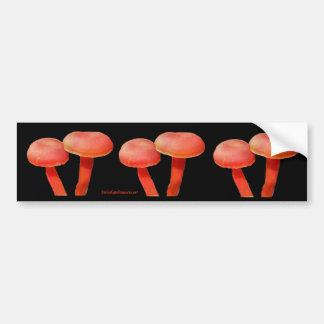 Orangen plocka svamp naturfotobildekalet bildekal