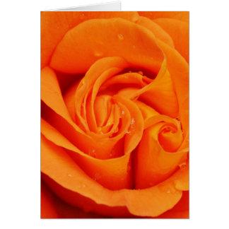 Orangeroblommar Hälsningskort