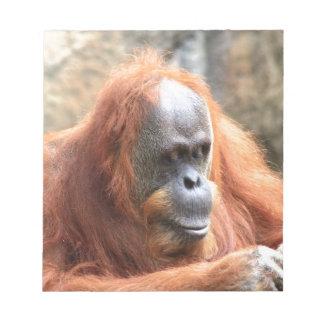 Orangutan Anteckningsblock