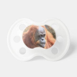 Orangutan Napp