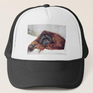 Orangutan Truckerkeps